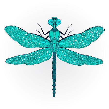 imagen: Dragonfly