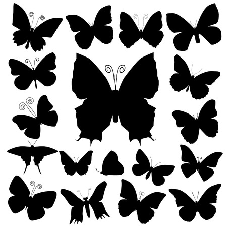 silhouettes: butterfly silhouettes