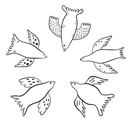 pigeon owl: Bird doodles Illustration