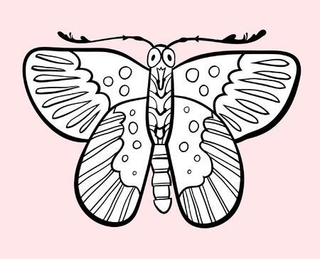 butterfly: butterfly