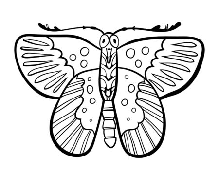 insect flies: hand drawn butterfly