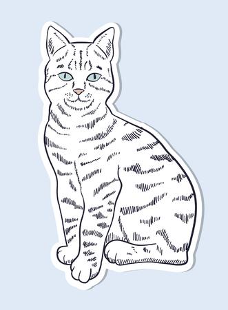 Hand drawn cat sticker Illustration