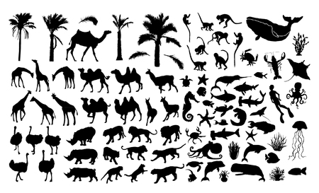 Wildlife vector silhouettes