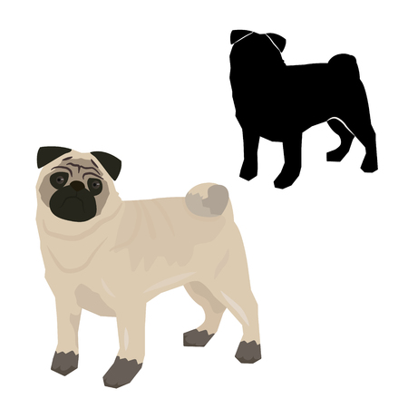 Decorative contour portrait of standing in profile Pug, vector isolated illustration in black color on white background