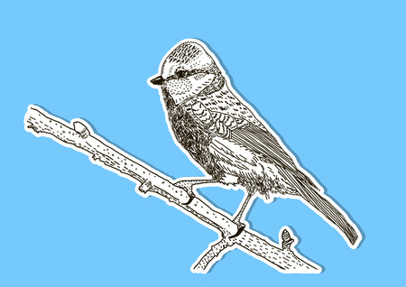 The image of the bird on the branch. Vector illustration. Sticker version Ilustração