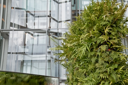 green building: Office building and green grass, eco concept