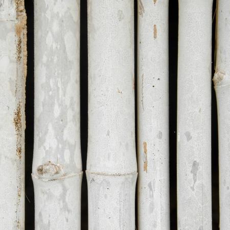 Bamboo fence close up background   photo