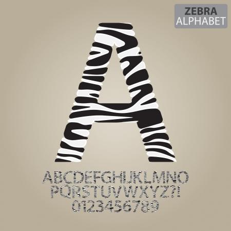 animal alphabet: Zebra Stripe Alphabet and Numbers Vector