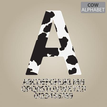 alfabeto: Vaca del alfabeto de la piel y el n�mero de vectores Vectores