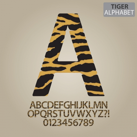 black leopard: Tiger Stripe Alphabet and Numbers Vector