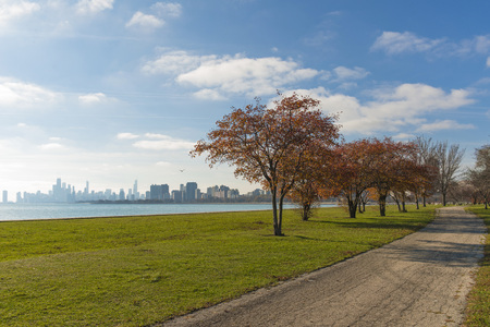 Autumn trees city Chicago in background Stock Photo