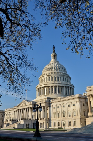 capitol building: Washington DC, Capitol building in autumn