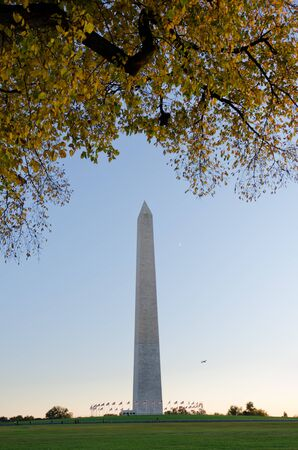 phallus: Washington Monument in autumn with yellow leave trees  Stock Photo