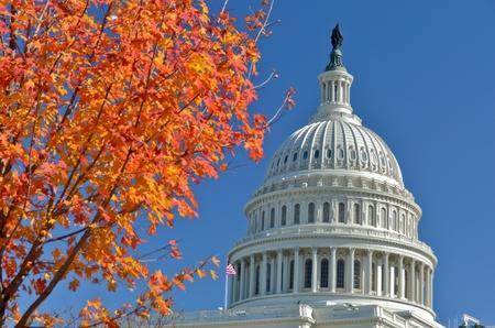 Washington DC, Capitol building in autumn photo