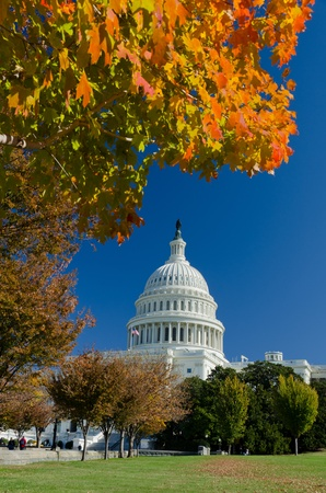 Washington DC, Capitol building in autumn photo