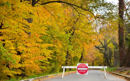 Do not enter traffic sign on a forest road in autumn with yellow trees  photo