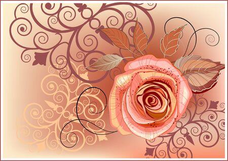 rosas naranjas: Resumen de antecedentes con la rosa en colores naranja y marrón