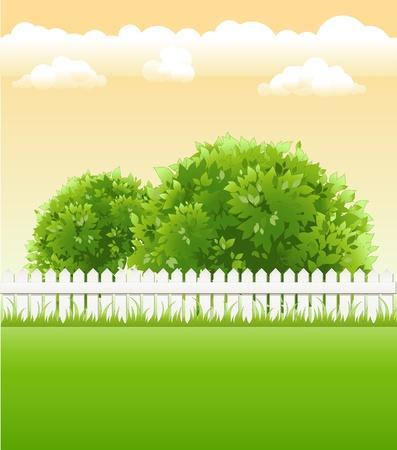 jardin d'été avec des arbres et garde-corps de lumière Vecteurs