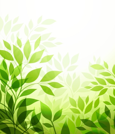 abstract background with green sheet Stock Vector - 12789027