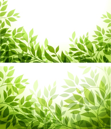 set - abstract background with green sheet Vettoriali