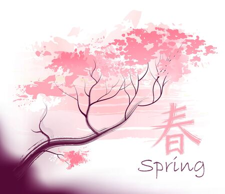 wed beauty: Beautiful sacura spring cherry tree branch in bloom with pink sky closeup - sketch