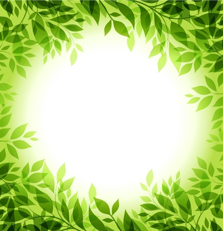 abstract background with green sheet Vectores