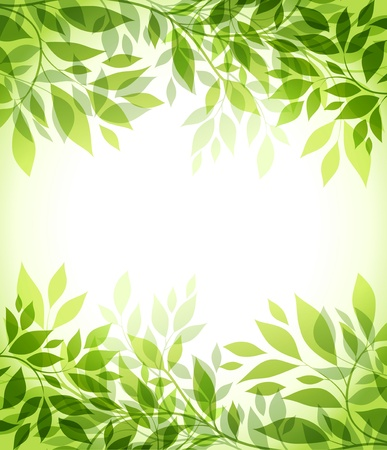 leaf line: abstract background with green sheet Illustration