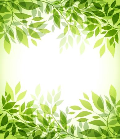feuille arbre: fond abstrait avec feuille verte Illustration