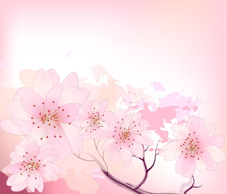 concepts and ideas: Beautiful sacura spring cherry tree branch in bloom with pink sky closeup - sketch