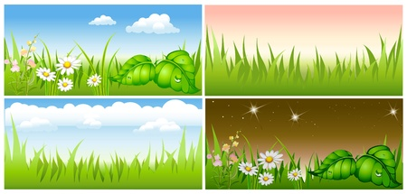 set summer background green meadow Vector
