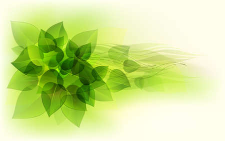 Abstract background with green leaves Stock Vector - 16551265