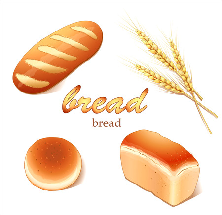 commercial kitchen: Set breads, bakery products - realistic vector images