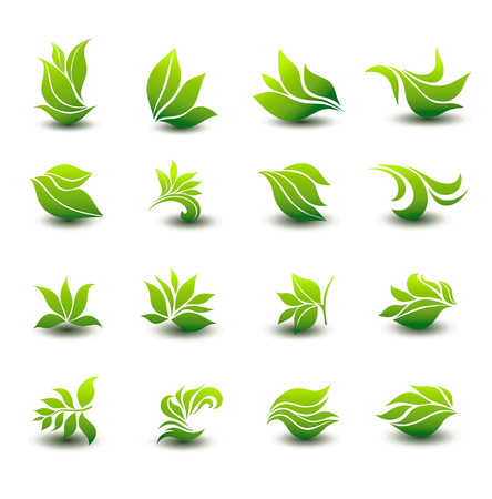 plant tree: a great set of icons of stylized green leaves