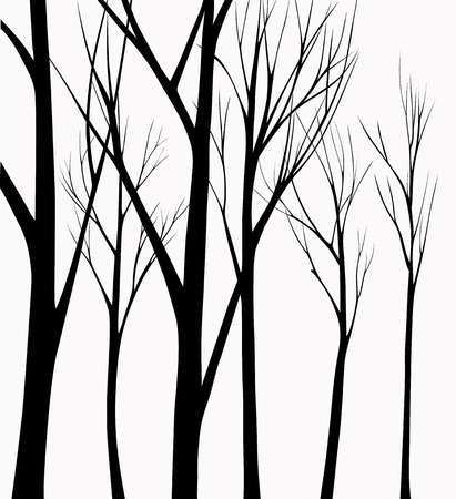 botanical garden: Group of silhouettes trees dark light background Illustration