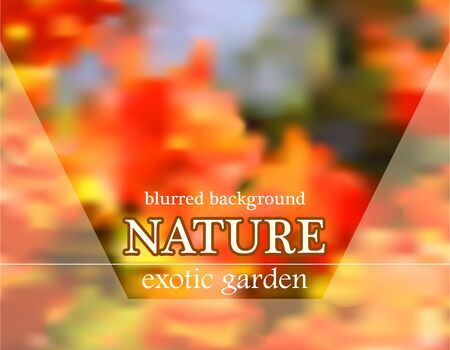tuinontwerp: Blurred floral bright background with garden design Stock Illustratie