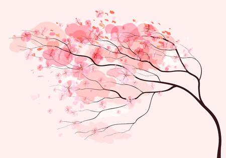 pintura abstracta: Sakura rama, fondo de color rosa floral hermoso del resorte Vectores