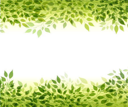 branches with leaves: Beautiful abstract light background with green branches and leaves Illustration