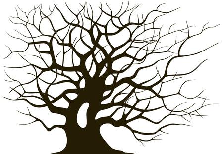 ramification Silhouette d'un vieil arbre sur un fond clair Vecteurs