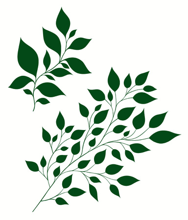 Isolated vector illustration of stylized branches with foliage Illustration