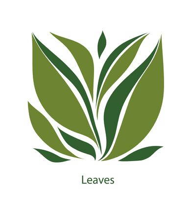 Green leaves of trees and plants. Elements for eco, organic and bio logos. Leaves icon vector isolated on white background.