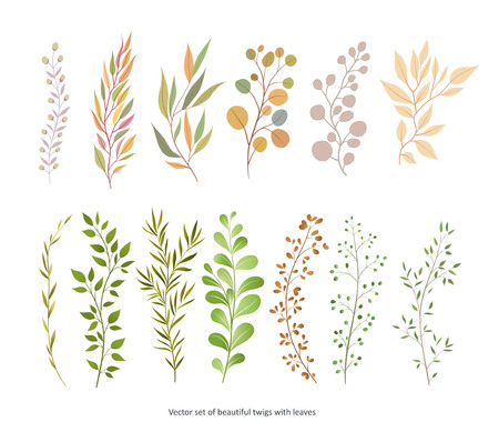 Handdrawn Vector Watercolour style, nature illustration. Set of  leaves and branches, Imitation of watercolor, isolated on white.