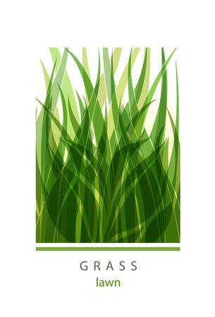 Grass Label abstract design. Green icon. Beautiful Garden Company. Vettoriali