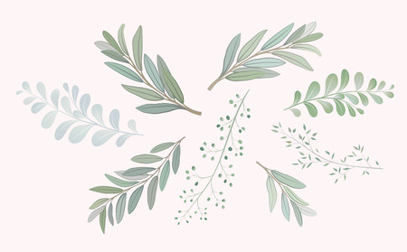 Set with beautiful twigs with leaves. Wedding ornament concept. Imitation of watercolor, isolated on white. Sketched wreath, floral and herbs garland Vettoriali
