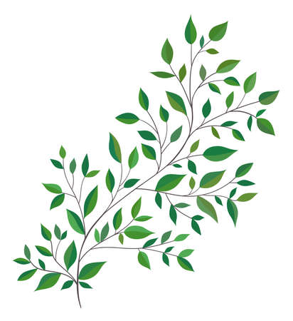 Beautiful twig with green leaves. Hand drawn vector illustration. Ilustração