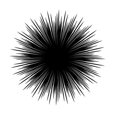 Siluetas de los animales de erizo de mar aislado en blanco y negro ilustración vectorial estilo mínimo Ilustración de vector