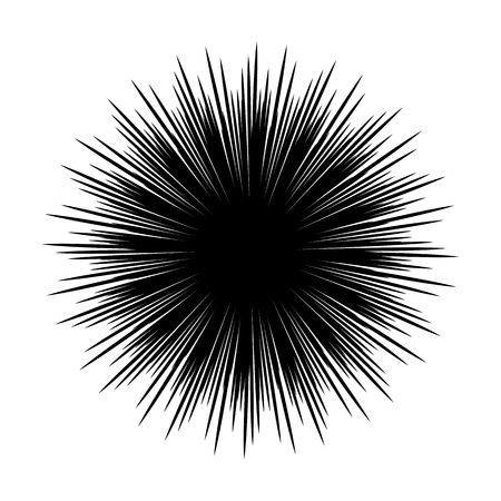 Silhouettes of sea urchin animals isolated black and white vector illustration minimal style Illustration