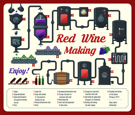 Wine making. how wine is made, wine elements, infographic