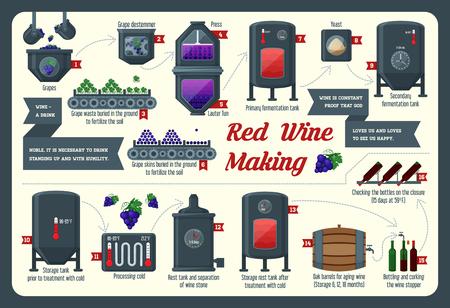 ワインを作る。ワインの作り方、ワインの要素、インフォ グラフィック