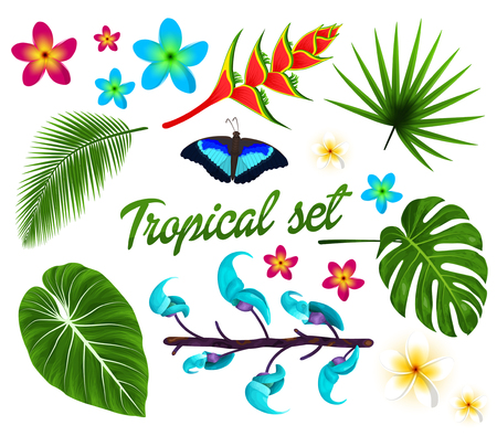 Vector tropical set, jungle leaves set, plumeria, tropical flowers. Butterfly. isolated on white background. Vector illustration.  イラスト・ベクター素材