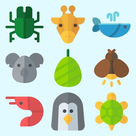 Icons set about Animals with turtle, whale, firefly, koala, prawn and cocoon